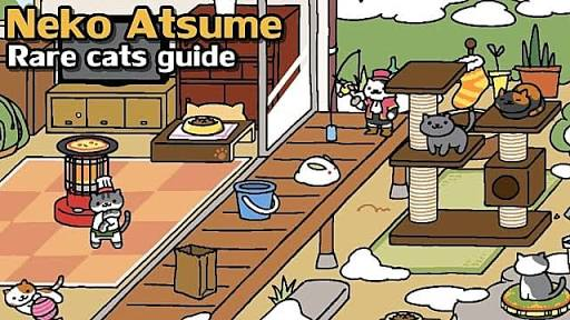 neko atsume tips