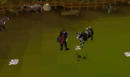 Osrs-faire-de-l'argent-peau-de-vache